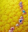 Yellow flower field-03-Original Vietnamese Art