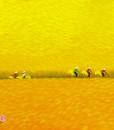 Harvest season 12-80x80-TN