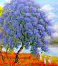 Blossom season in Spring-120x120